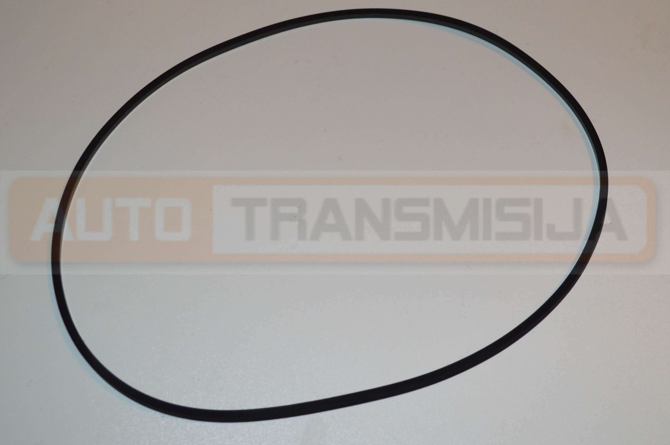 Siurblio sandarinimo žiedas 4L30E